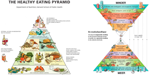 Harvard Healthy Eating Pyramid en Voedingszandloper