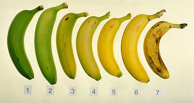 Onrijpe bananen